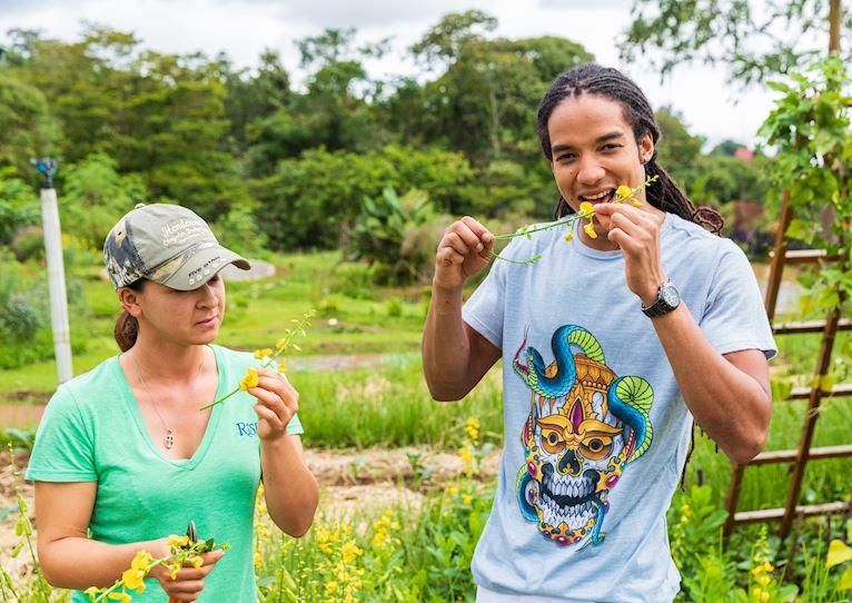 Paisaje comestible en Kinkara Luxury Retreat Santa Elena, San José
