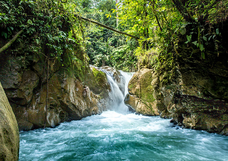 Aventuras guiadas en Kinkara Luxury Retreat Santa Elena, San José