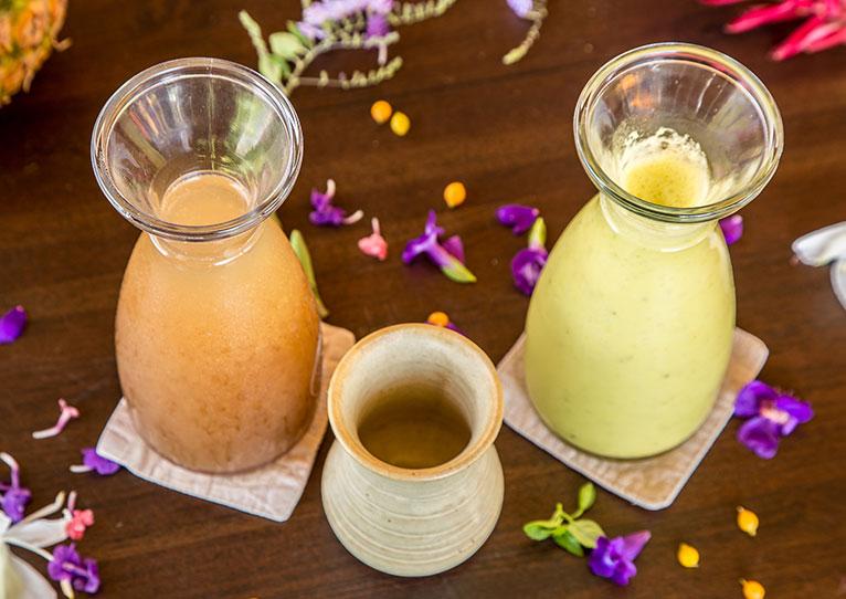 Kinkara Luxury Retreat Santa Elena, San Jose Liquid Elixirs